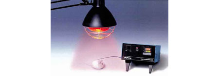 physitemp HL-1 heat lamp
